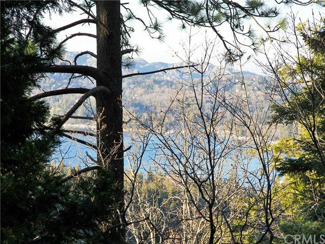 746 Blue Ridge Drive, Lake Arrowhead, CA 92385 (#IV20008160) :: Sperry Residential Group