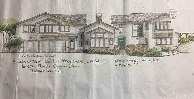 30431 Shelter Canyon Road, Trabuco Canyon, CA 92679 (#OC20009039) :: Legacy 15 Real Estate Brokers