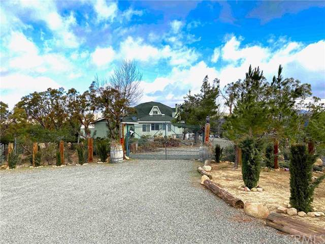 60235 Burnt Valley Road, Anza, CA 92539 (#PW20009480) :: Allison James Estates and Homes