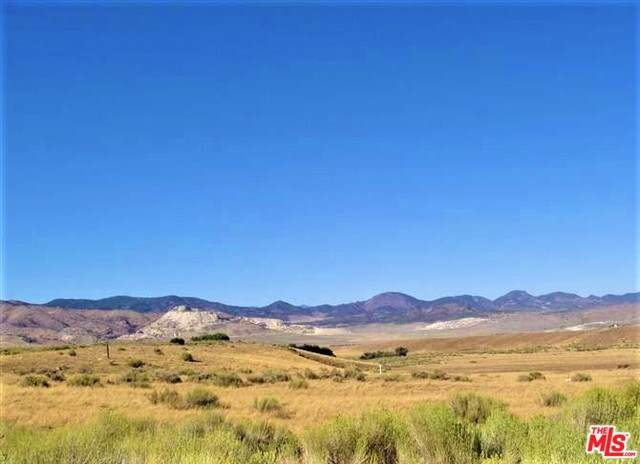 0 Vic Of Dennison And Alan Lane, Tehachapi, CA 93561 (#20543632) :: Sperry Residential Group