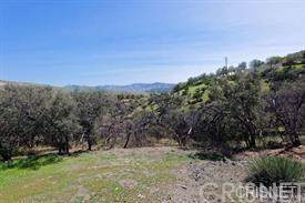 32410 Barber Road, Agua Dulce, CA 91390 (#SR20009787) :: Sperry Residential Group