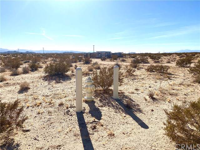66793 Saturn Street, Joshua Tree, CA 92252 (#JT19278173) :: Allison James Estates and Homes