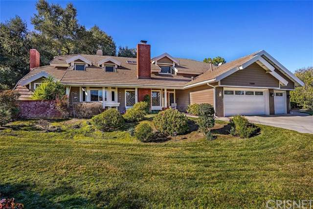 15604 Saddleback Road, Canyon Country, CA 91387 (#SR20010363) :: Team Tami