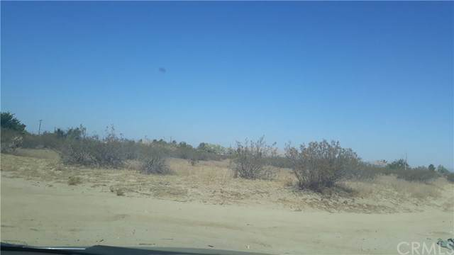 0 Vac/Vic Avenue U/175 Ste, Llano, CA 93591 (#SW20011044) :: Sperry Residential Group