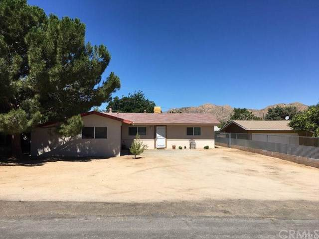 7754 Shawnee, Yucca Valley, CA 92284 (#OC20011287) :: Sperry Residential Group