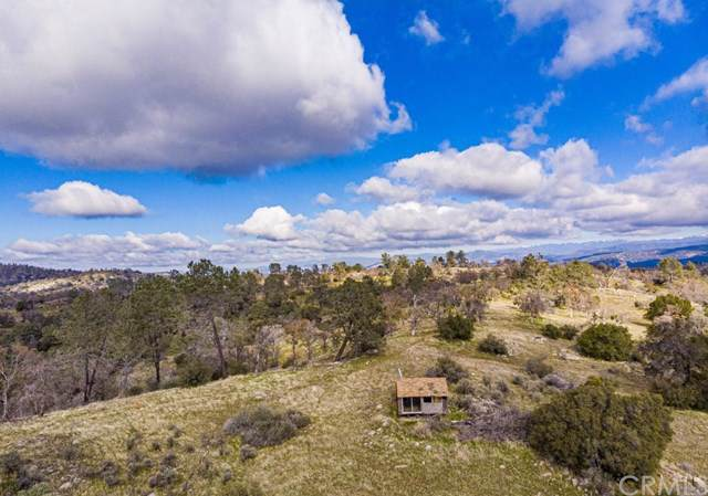0-40 AC Bluebird Trail, Coarsegold, CA 93614 (#FR20011505) :: Twiss Realty