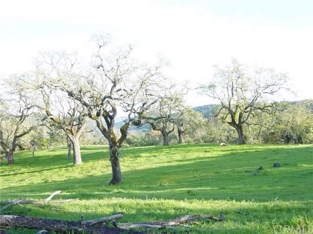 11610 Santa Rosa Creek Road, Templeton, CA 93465 (#NS20011645) :: Z Team OC Real Estate