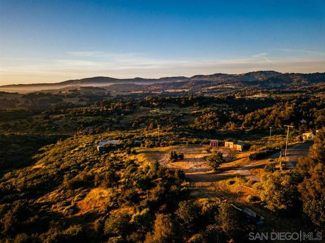4028 Eagle Peak Road, Julian, CA 92036 (#200002655) :: eXp Realty of California Inc.