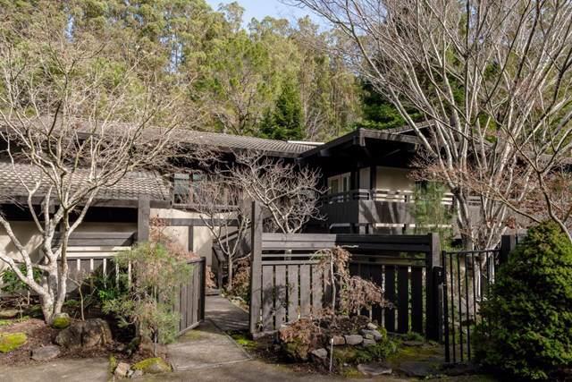 1330 Hayne Road, Hillsborough, CA 94010 (#ML81779426) :: Sperry Residential Group