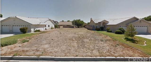 13501 Seagull Drive, Victorville, CA 92395 (#SR20012212) :: Sperry Residential Group