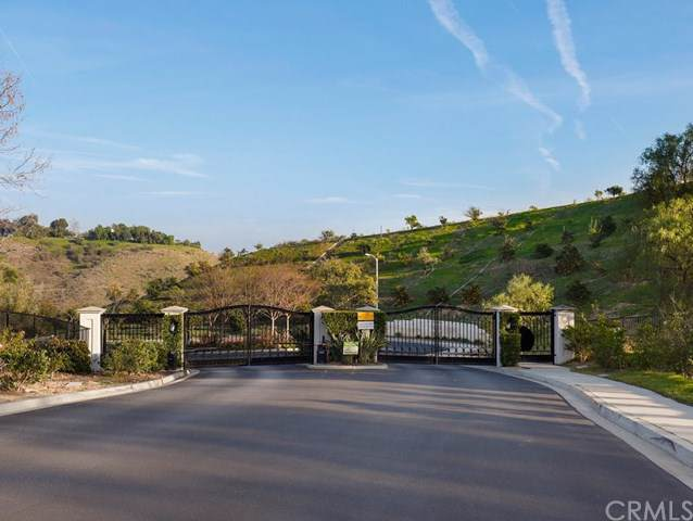 12478 Nelson Road, Moorpark, CA 93021 (#BB20012053) :: Allison James Estates and Homes