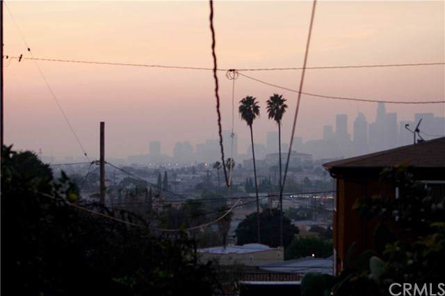 1110 N Alma Avenue, Los Angeles (City), CA 90063 (#DW20011622) :: Sperry Residential Group