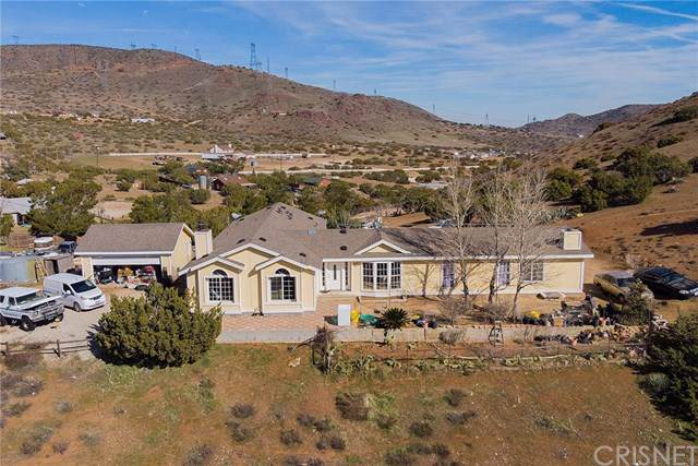 34848 Wild Hare Road, Acton, CA 93551 (#SR20011653) :: Sperry Residential Group