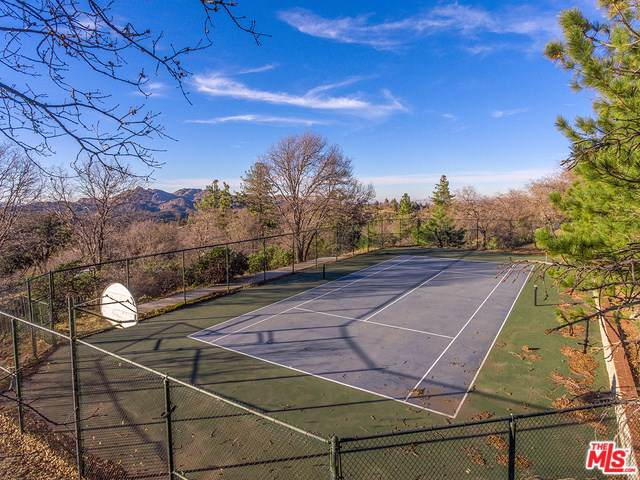1621 Lupin Road, Lake Arrowhead, CA 92352 (#20545046) :: J1 Realty Group