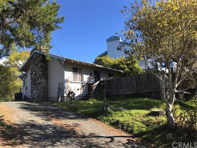 1692 Berwick Drive, Cambria, CA 93428 (#SC20009598) :: Sperry Residential Group