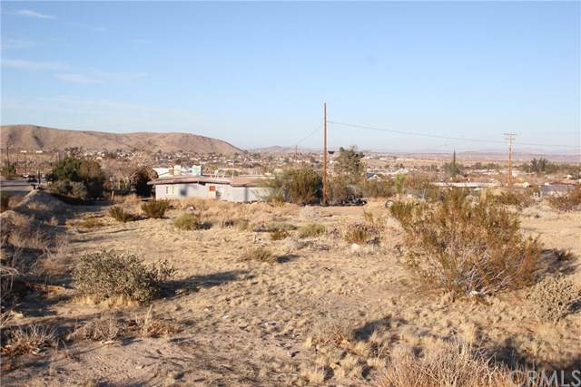 61708 Valley View Circle, Joshua Tree, CA 92252 (#EV20012782) :: Sperry Residential Group
