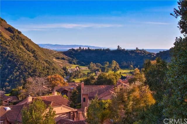 2347 Snowberry Court #62, Avila Beach, CA 93424 (#SP20012866) :: Steele Canyon Realty