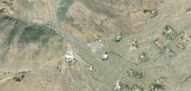 Bending Elbow Dr, Borrego Springs, CA 92004 (#200003160) :: Sperry Residential Group