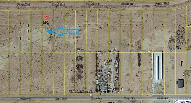 0 Forest- Boulevard, California City, CA 93505 (#320000237) :: RE/MAX Parkside Real Estate