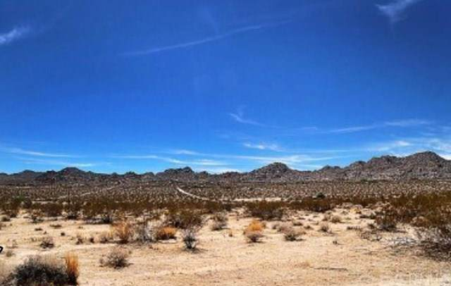 141 Verbena Road, Joshua Tree, CA 92252 (#JT20013348) :: Allison James Estates and Homes