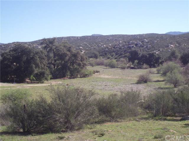 53 Willow Canyon Road - Photo 1