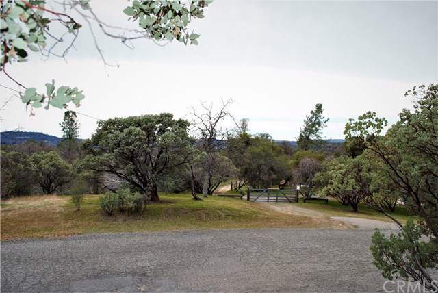 46304 Skyline Ridge Rd, Coarsegold, CA 93614 (#MD20013050) :: Sperry Residential Group