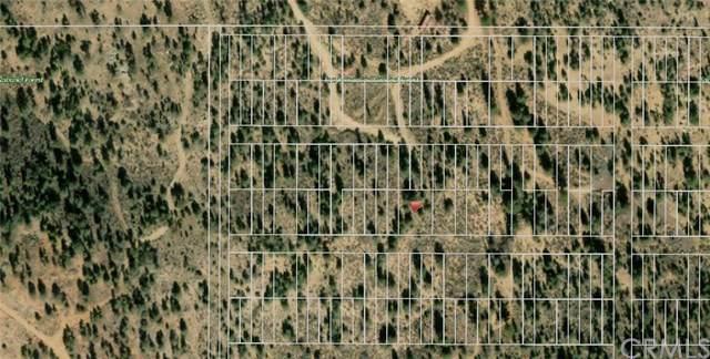 0 Avenue D, Big Bear, CA 92314 (#CV20013545) :: Rogers Realty Group/Berkshire Hathaway HomeServices California Properties