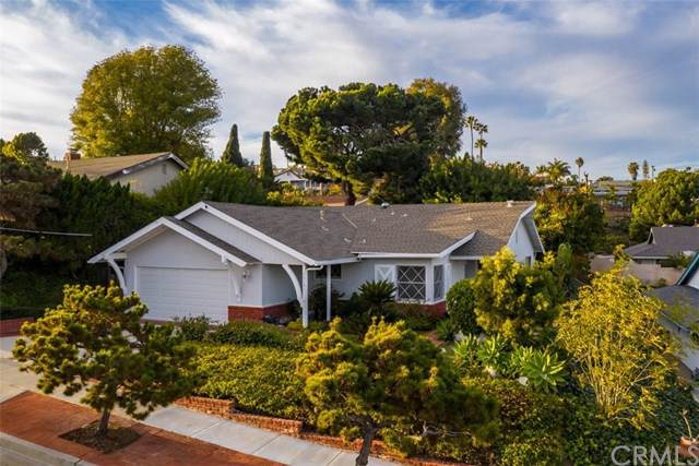 33191 Blue Fin Drive, Dana Point, CA 92629 (#OC20004687) :: Allison James Estates and Homes
