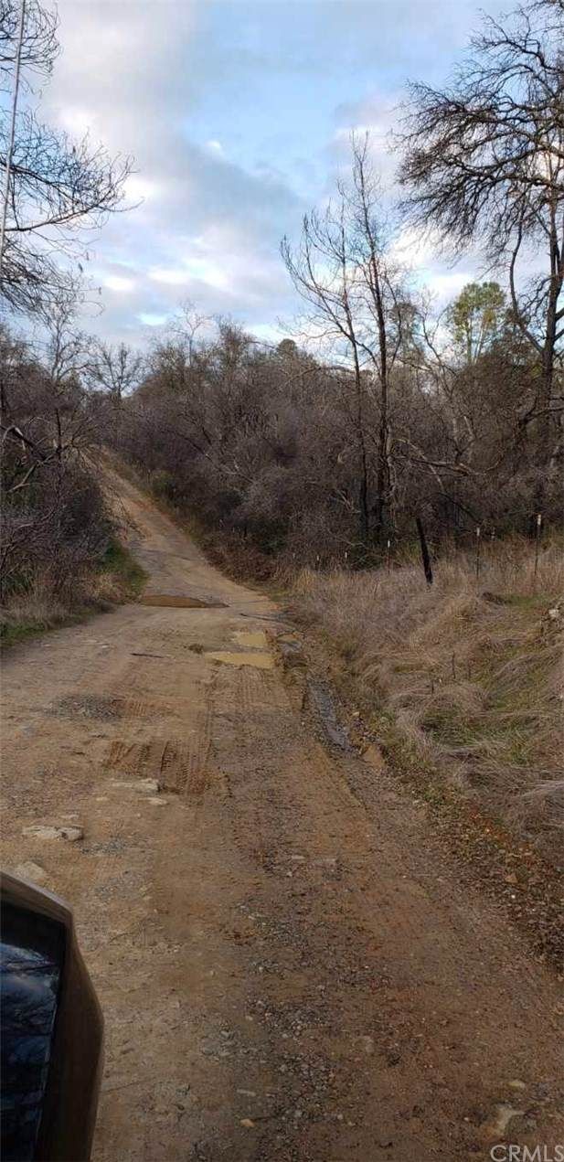 0 Purple Rocks Road, Oroville, CA 95966 (#OR20009434) :: Mainstreet Realtors®