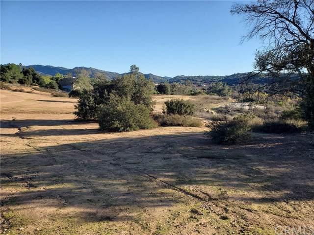 28371 Beija Flor, Valley Center, CA 92082 (#OC20013790) :: Z Team OC Real Estate