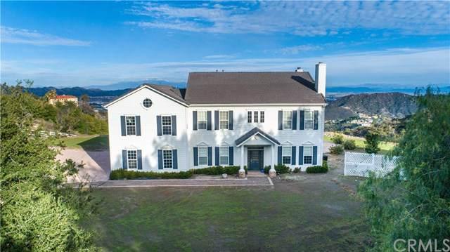 38638 Avenida Carolinas, Murrieta, CA 92562 (#SW20013618) :: RE/MAX Estate Properties