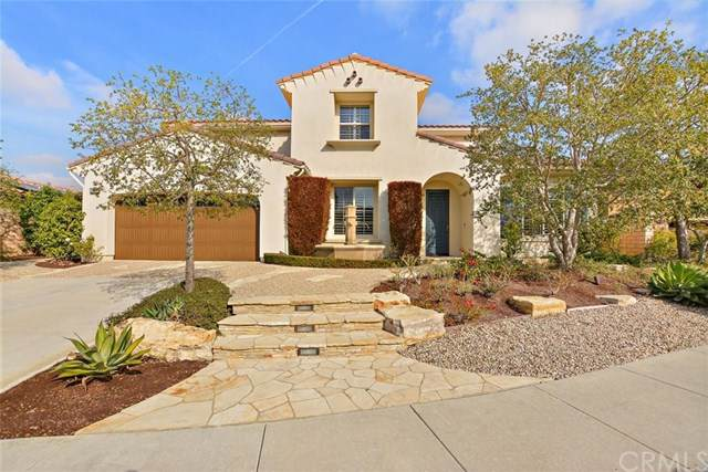 29311 Via Zamora, San Juan Capistrano, CA 92675 (#PW19278086) :: Allison James Estates and Homes