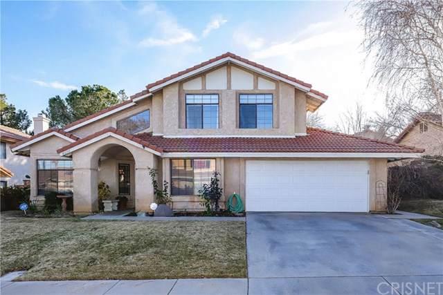 4628 Vitrina Lane, Palmdale, CA 93551 (#SR20011756) :: Sperry Residential Group