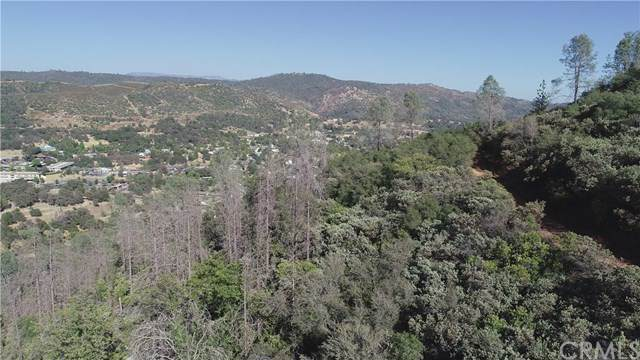 5 Standen Park Road, Mariposa, CA 95338 (#MP20014116) :: Sperry Residential Group