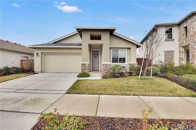 3285 Sespe Creek Way, Chico, CA 95973 (#SN20011267) :: The Laffins Real Estate Team