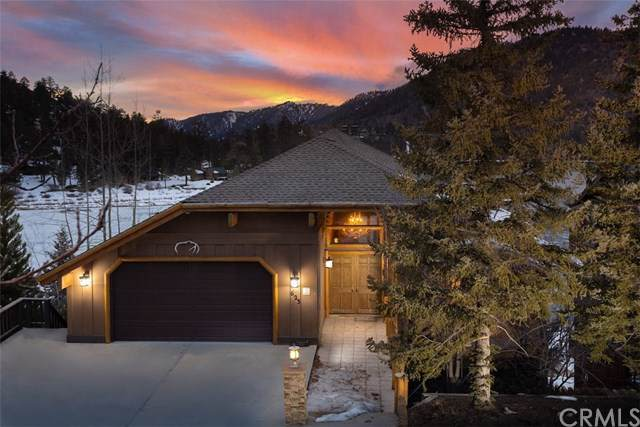 623 Cove Drive, Big Bear, CA 92315 (#PW20014252) :: Sperry Residential Group