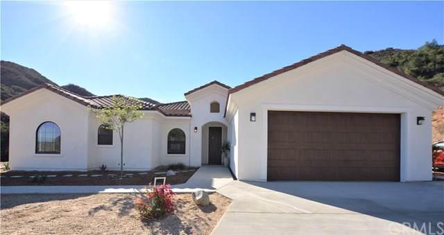 38255 Paseo Chaparro, Murrieta, CA 92562 (#SW20012769) :: RE/MAX Estate Properties