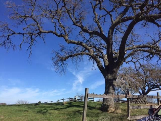 735 Renate Way, Paso Robles, CA 93446 (#NS20014429) :: Allison James Estates and Homes