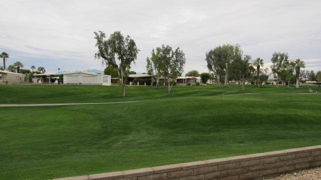 38501 Fawn Springs Drive, Palm Desert, CA 92260 (#219037325DA) :: Team Tami