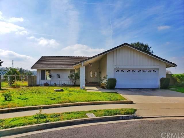 25321 Orellano Way, Laguna Hills, CA 92653 (#OC20013038) :: Doherty Real Estate Group