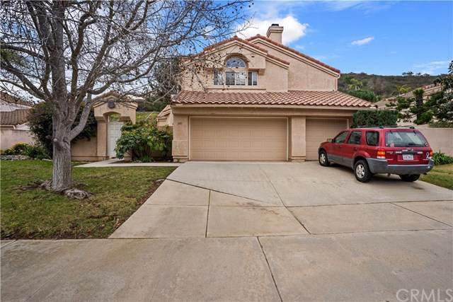 349 Glendale Avenue, San Marcos, CA 92069 (#OC20014427) :: Zember Realty Group