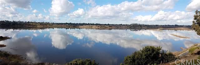 2423 Vista Nobleza, Newport Beach, CA 92660 (#OC20015071) :: Team Tami