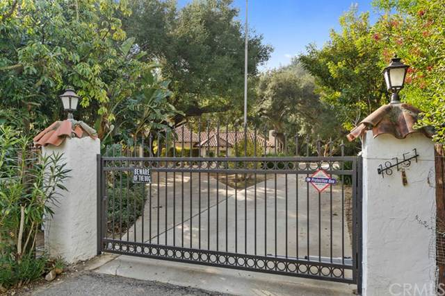 18751 Santiago Canyon Road, Silverado Canyon, CA 92676 (#OC20013331) :: Mainstreet Realtors®