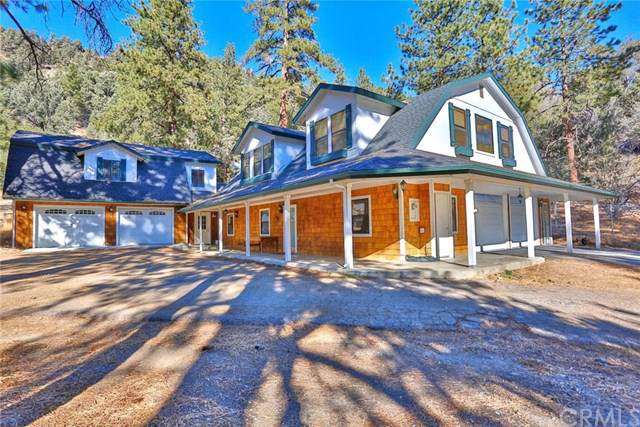 800 Swathout Canyon Road, Wrightwood, CA 92397 (#OC20015130) :: The Brad Korb Real Estate Group