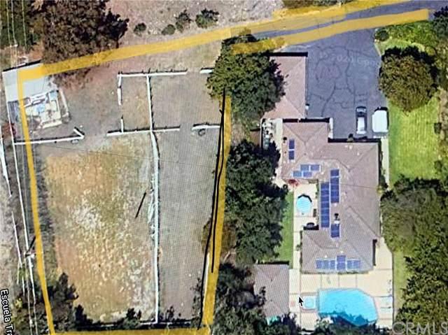 29081 Palos Verdes Drive East, Rancho Palos Verdes, CA 90275 (#PV20015204) :: Compass