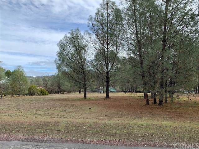 1850 Spring Valley Road, Clearlake Oaks, CA 95423 (#LC20015738) :: RE/MAX Masters