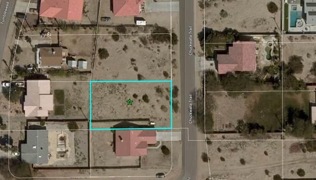 0 Chuckwalla Drive, Desert Hot Springs, CA 92240 (#219037396DA) :: Hart Coastal Group
