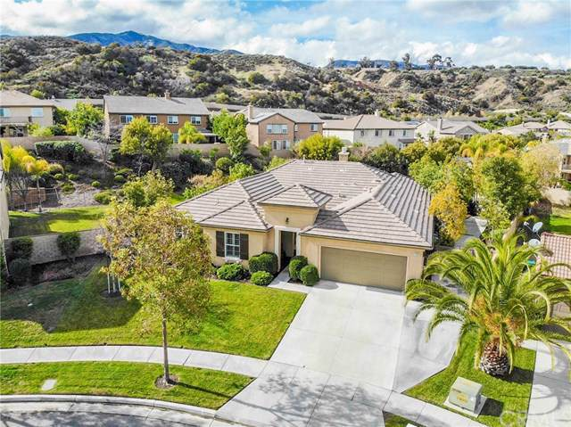 1283 Strawcross Lane, Corona, CA 92882 (#TR20016026) :: Cal American Realty