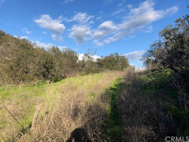 0 Daily Road, Fallbrook, CA 92028 (#SW20015745) :: Zember Realty Group