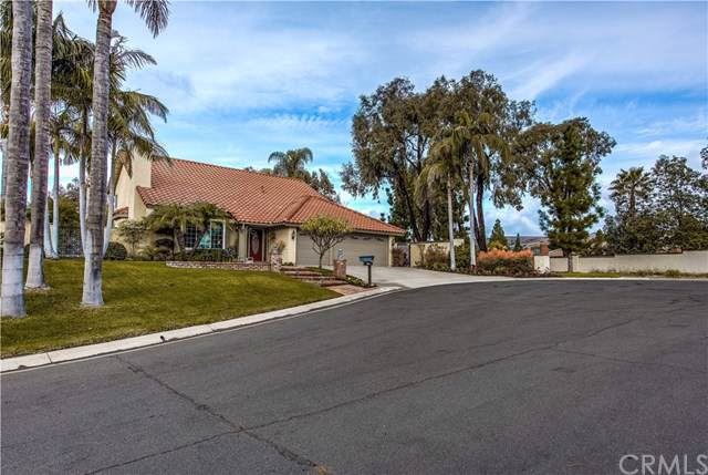 5035 Via Donaldo, Yorba Linda, CA 92886 (#PW20015801) :: Case Realty Group